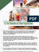 AULA 3 - As Três Dimensões Da Cultura Organizacional