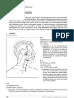 acupuntura puntos curiosos
