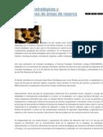 Minerales estratégicos y declaraciones de áreas de reserva especiales