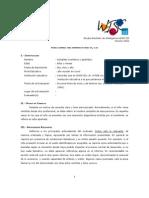 Modelo Informe WISC III