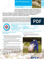 20 Condition Scoring of Sows.