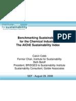 AIChE Sustainability Index Aug 29 08