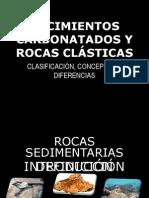YACIMIENTOS CARBONATADOS Y ROCAS CLÁSTICAS