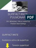 049_SURFACTANTE PULMONAR MARZO 2009 (1)