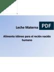 Composicion de La Leche Materna