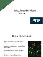 Bases Moleculares Da Biologia Celular