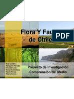 florayfaunadechilefinal-1224550405000102-8
