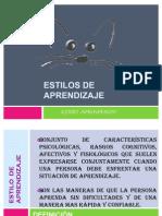 ESTILO DE APRENDIZAJES