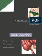 PATOLOGÍA DEL APENDICE