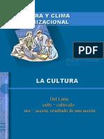 Cultura Organizacional Miguel