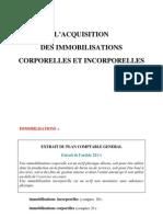 Acquisition Des Immobilisations Corporelles Et Incorporelles