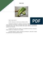 Fundamenstos Gastronomia