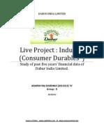dabur Financial data analysis