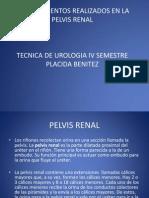 Procedimientos en La Pelvis Renal