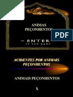 8-ANIMAIS_PECONHENTOS