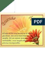 Diapositivas de I. a. M.
