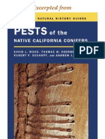 CNHG Pests of Native California Conifers