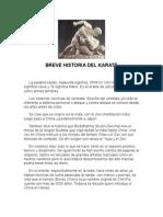 Breve Historia Del Karate