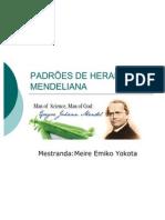 PADRÕES DE HERANÇA