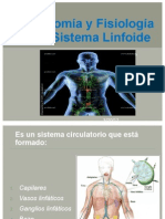 Anatomía y Fisiología del Sistema Linfoide
