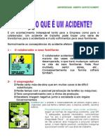 DDS Acidente Do Trabalho[1].Doc 1