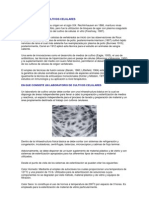 Cultivos celulas animales