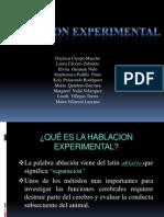 Abalcion Experimental 2
