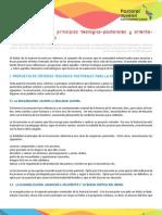La Pastoral Juvenil-Principios Teologico-pastorales y Orientaciones as