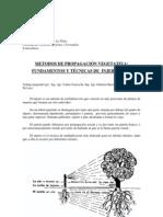 TP-S3-Guia_injertos