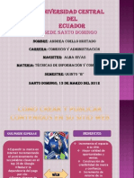 TECNICAS DE INFORMACION