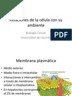 2. Membrana Celular