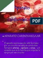 APARATO CARDIVASCULAR
