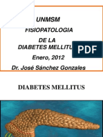 Clase 8 Diabetes Mellitus Fisio 2012 New