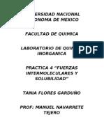 practica 3 lab inorganica