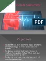 Cardiovascular Assessment