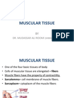 Muscle Histology by Dr Roomi