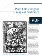 Plant Hallucinogens as Magical Medicines