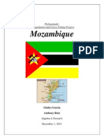polynaomial mozambique project