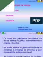 Viroses Da Videira,Sint.diagnose,Controle