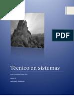 Técnico en sistemas ensayo