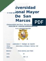 3234350 Naturaleza Del Liderazgo