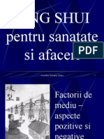 Feng Shui Pentru Sanatate Si Afaceri