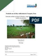 Pesticide Use in Rice Cultivation in Tarapoto, Peru