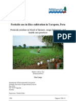 Pesticide Use in Rice Cultivation in Tarapoto, Peru