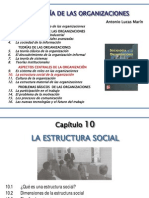 10 Estructura Social