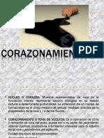 Corazonamiento+%28analisis+de+Nucleos%29