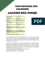 LAGUNA_EL_TINIJE