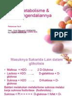 METABOLISME 4, CICIK & NURHAYATI