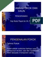 Asas Pengecaman Pokok Dan Daun - Hj. Abdul Rajak B.Ali , PPN