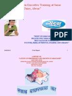 18575144 Saras Final Report